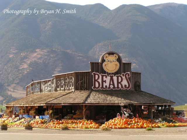 Bear's Fruit Stand
